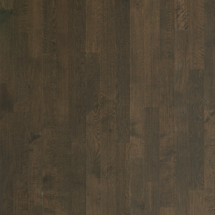 Driftwood - Canterbury